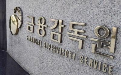 금감원, 내년 외부 자산평가·개발비 인식 등 회계처리 집중감리
