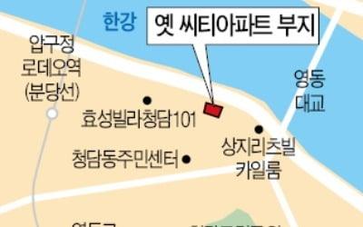 """옛 씨티아파트 부지 '새 주인'…""""청담동 최고급 빌라 지을 것"""""""