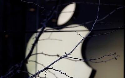 애플 실적비관 충격파…연초부터 실리콘밸리에 '먹구름'