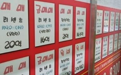"""""""거래 없어도…"""" 국세청·서울시, 강남권 중개업소 대대적 단속"""
