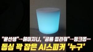 """[촌철살IT] """"윤선생""""→헤이지니, """"공룡 들려줘""""→핑크퐁…동심 꽉 잡은 AI스피커 '누구'"""