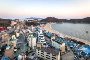 인천 중구 을왕동 해수욕장 인접 상가건물