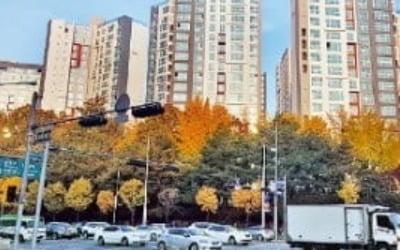 3억 낮췄어도…'래미안 개포 루체하임' 보류지 또 유찰