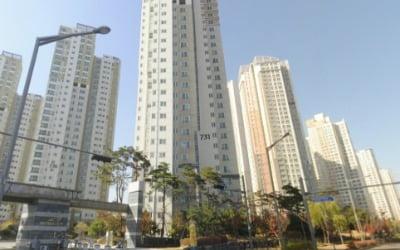 새 아파트 전셋값 5000만원…영종도의 비명