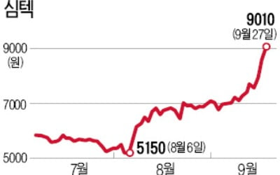 """""""반도체 패키징 업황 바닥 쳤다""""...심텍, 한달여 만에 86% 수직상승"""