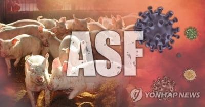 [특징주] 돼지열병으로 돈육값 상승 전망에 관련주 강세(종합)