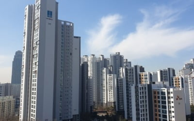 [종합] 분양가 상한제 '일보후퇴'…전세대출·꼼수대출 조인다