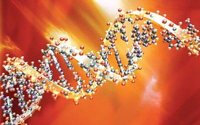 진원생명과학, 16억원 규모 플라스미드 DNA 공급계약 체결
