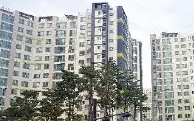 강동 입주 폭탄에도…하남 전셋값 '이상 급등'