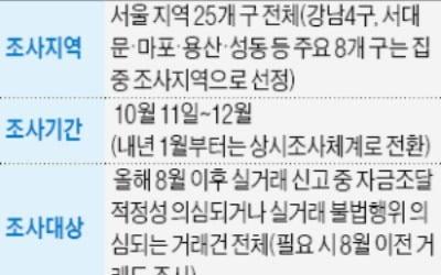 범정부 32개 기관, 강남권·마용성 부동산 거래 대대적 조사
