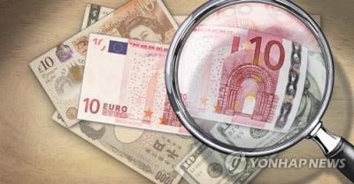 유로존 경기 둔화 우려에 원/달러 환율 상승