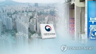 '단속 뜨니 문닫은 중개업소'…정부 첫 부동산 현장점검 어땠나