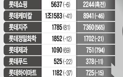 그룹 高배당 정책이 부담스런 롯데 계열사들