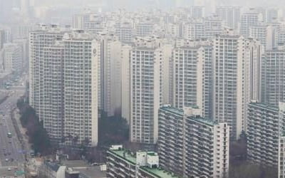 [12·16대책 한 달] '대출 중단'에 둘로 나뉜 서울 아파트 시장