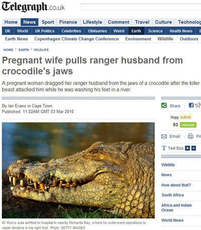 무시무시한 악어에 물린 남편 구한 임산부