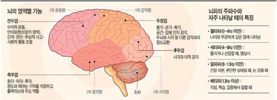 [생생 헬스] 뇌졸중ㆍ학습장애 걱정된다면…뇌파ㆍCTㆍMRI 찍어보세요
