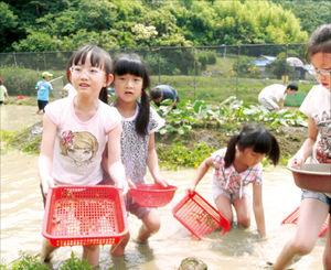 """경남 비봉내마을, 대나무 향 가득한 숲길…""""休~ 여기가 천국"""""""