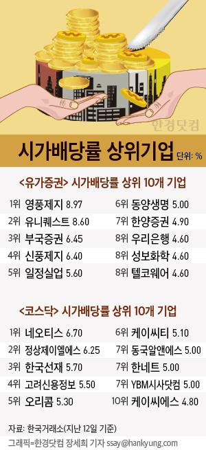 '시가배당률 1위' 영풍제지…네이버·다음카카오 '꼴찌'
