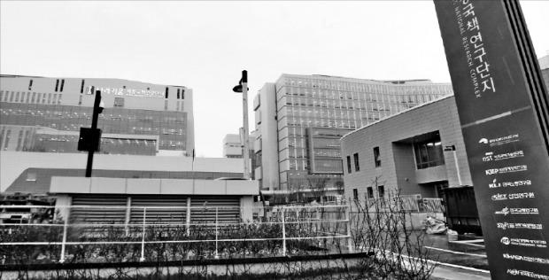 한국개발연구원 등 11개 국책연구기관, 2500여명의 연구원이 일하고 있는 세종국책연구단지 전경. 한경DB