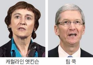 """BEPS발 세금 폭탄 피하자""…로비전 펼치는 구글·애플"