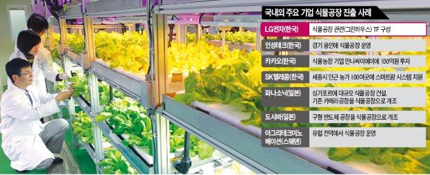 ['식물공장'서 新성장동력 찾는 LG전자] 반도체 공장이 '식물공장'으로…파나소닉 등 글로벌 IT기업 '각축'