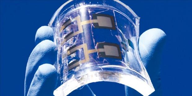 바르토슈 그쥐보프스키 교수 연구진은 금 나노입자를 활용해 잘 휘고 습한 곳에서도 작동하는 화학 전자회로를 개발했다. IBS 제공