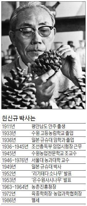 """""""산림자원이 곧 국부의 척도다""""…민둥산을 숲으로 바꾼 현신규"""