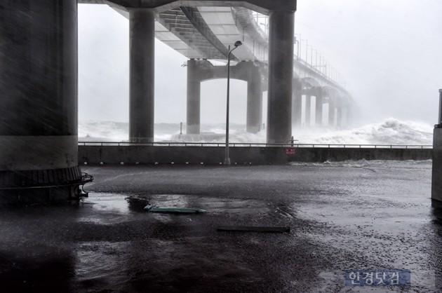 태풍 '차바' 영향 거가대교·마창대교 통행 전면 통제