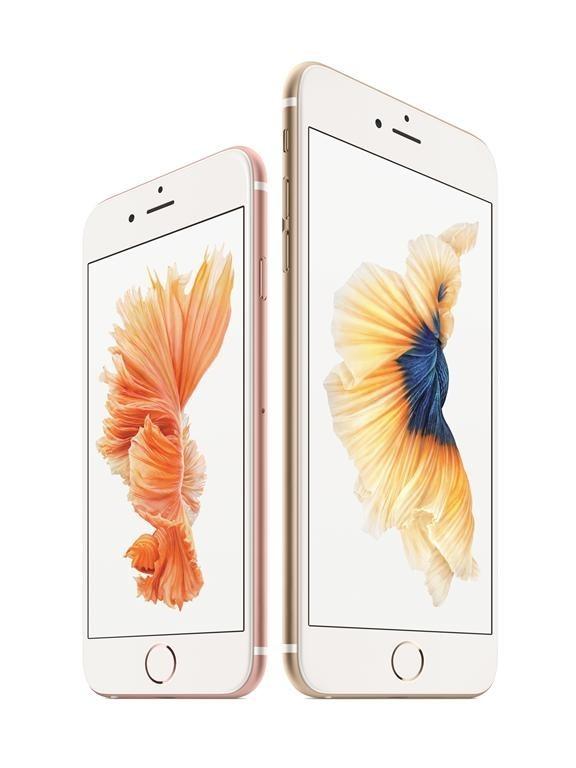 국표원, 아이폰 결함 조사 검토…애플, 중국과 달리 한국선 소극 대응