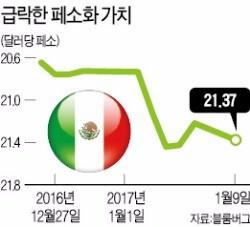 [글로벌 기업 빨아들이는 트럼프] 트럼프노믹스가 두려운 멕시코…페소화 가치 올들어 3.2% 하락