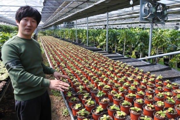 커피 묘목 매년 6만 그루 파는 30대 '커피 농부'