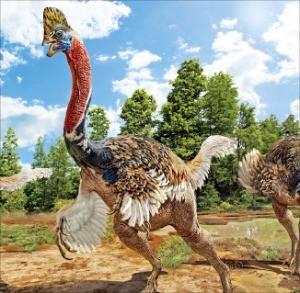 타조 사촌뻘 '머리에 벼슬 있는 공룡' 화석 발견