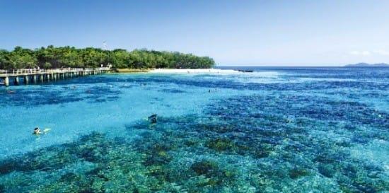 세계 최대의 산호초 군락지로 유네스코 세계자연유산에 지정된 케언스 그레이트베리어리프