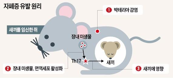 자폐아 출산 원인 밝혀졌다