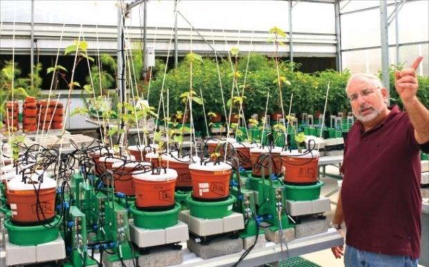 로니 발라흐 히브리대 교수가 센서를 장착한 화분으로 관수가 식물의 생장에 미치는 영향에 대해 설명하고 있다. 추가영 기자