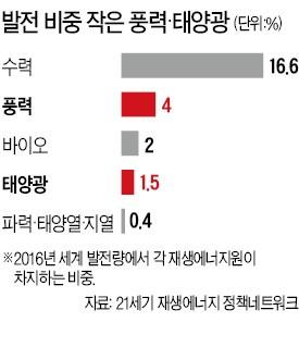 """""""세계 풍력·태양광 비중 24.5%"""" 원문엔 5.5%…탈원전 단체, 통계 '뻥튀기'"""