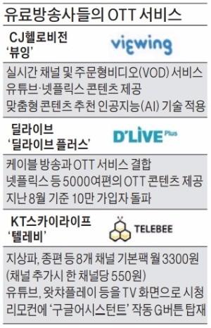 """TV서 넷플릭스·유튜브 본다""… CJ헬로비전 'OTT 승부수'"