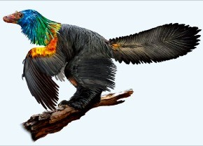 공룡은 녹색 아니면 갈색?… 쥐라기 시대 '무지개 공룡' 있었다