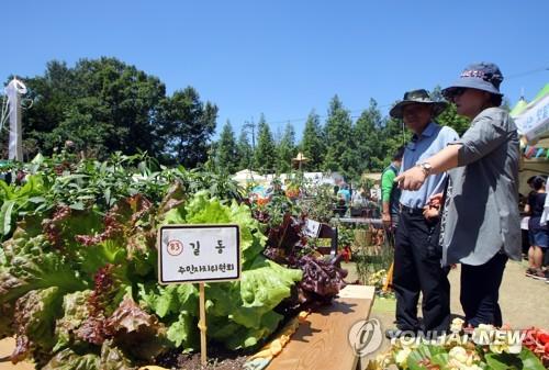 2022년까지 도시농업인 190만→400만명으로 늘린다