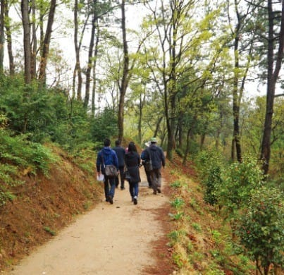 가우도 둘레길을 걷는 관광객들.