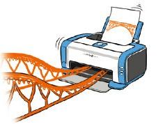 [오춘호의 글로벌 프런티어] 네덜란드의 3D 프린팅 다리