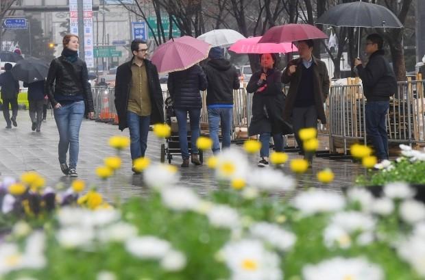 봄비 내리는 날