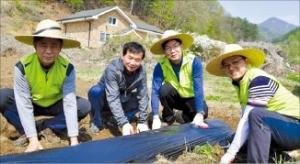 농협은행, 농촌 일손돕기 활동