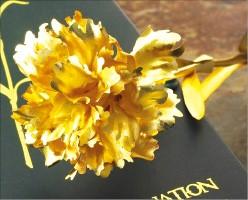 카네이션 왜 안팔리나 했더니… 요즘 선물 대세는 '황금꽃'이었네