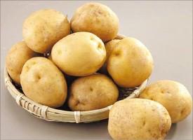 '金자'된 감자값에도 감자칩값 안 오른 이유는