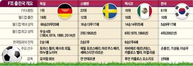 [가자! 러시아 월드컵] 만만한 상대 없는 F조… '바이킹의 후예' 스웨덴 무조건 잡아라