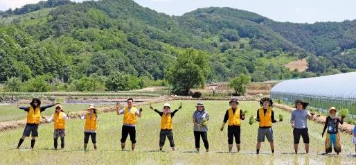 법무법인 지평의 농촌봉사 활동. 지평 제공