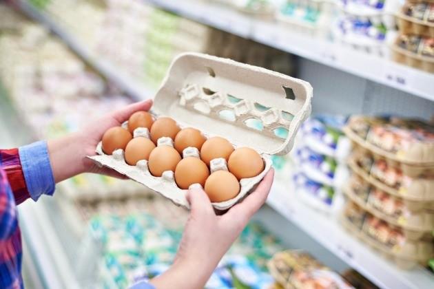 '살충제 계란' 재발 가능성…정부 대응 어떻게 달라졌나