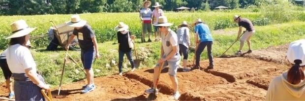 소셜벤처 '동구밭'의 텃밭에서 도시농부들이 땅을 일구고 있다. /동구밭팩토리 제공