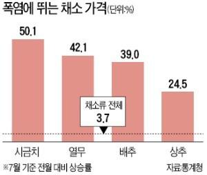 폭염에 폭등하는 식탁물가… 1주일새 깻잎 141%·쪽파 121% ↑